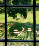 Garden Impression through an Old Window Stock Images