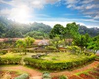 Garden in India stock image