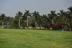 Garden in India Stock Photography
