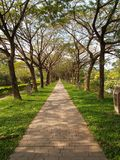 Garden Infinity Walkway Path stock photos