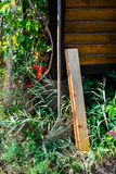 Garden instrument and autumn flora near piece of house stock photos