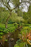 Garden in ireland. Muckross house Stock Image