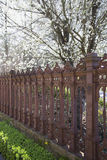 Garden with iron fence Royalty Free Stock Image