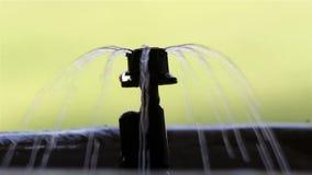 Garden Irrigation bubbler watering flower pot stock video footage