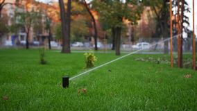 Garden irrigation sprinkler watering lawn in the park near walkway. Automated rotating irrigation system. Green grass