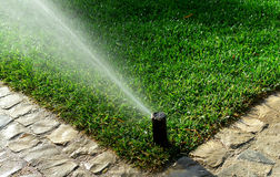 Garden irrigation system. Watering lawn Stock Images