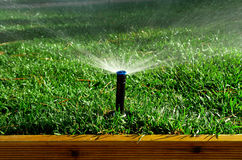 Garden irrigation system. Watering lawn Stock Photography