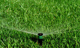 Garden irrigation system. Watering lawn Royalty Free Stock Image