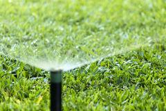 Garden Irrigation system spray watering lawn. Stock Images