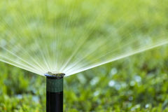 Garden Irrigation system spray watering lawn. Royalty Free Stock Photos