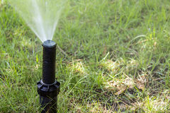 Garden Irrigation system sprinkler watering lawn. Stock Images