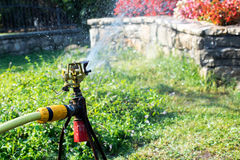 Garden irrigation system watering lawn. Watering sprayer Stock Image