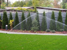 Garden irrigation, working sprinklers Royalty Free Stock Images