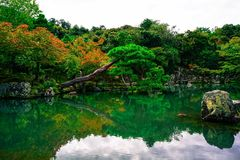 The Garden in Japanese style. Japanese garden style is just perfect for small gardens and pool Stock Images