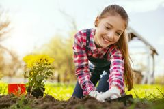 Joyful happy girl using gardening tools. In the garden. Joyful happy girl using gardening tools while planting flowers stock images