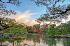 Garden in Kinkaku-ji the Golden Pavilion in Autumn season, Japan Royalty Free Stock Image