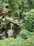 Garden with koi ponds2 Royalty Free Stock Photos