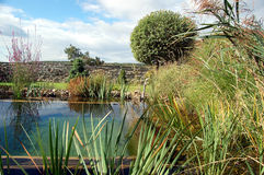 Garden with lagoon Stock Images