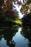 Garden lake. A little garden like inside an italian villa, Como, Italy Royalty Free Stock Photo