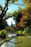 Garden Lake Stock Images