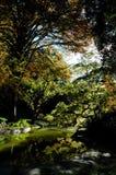 Garden Lake Royalty Free Stock Photography