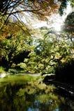 Garden Lake Stock Image