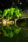 garden lake bridge Stock Photography