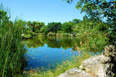 Garden Lake Royalty Free Stock Photography