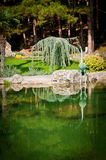 Garden with lake and statues. Green Garden with lake and statues Stock Photos