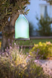 Garden lamp. On the branch royalty free stock photo