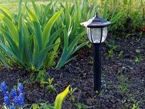 Garden lamp. In flower landscaping Stock Images