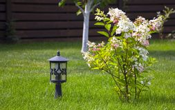 Garden lamp, made in the Middle Ages, on a lawn with a juicy green grass.  royalty free stock images