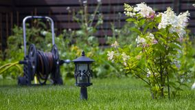 Garden lamp, made in the Middle Ages, on a lawn with a juicy green grass.  royalty free stock photo
