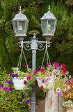 Garden lamp and  Petunia flowers Royalty Free Stock Photos