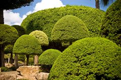 Garden landscape. Landscape of Nong Nooch Garden in Pattaya, Thailand Royalty Free Stock Photos