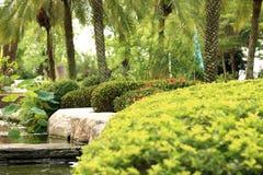 Garden landscape. In the garden Stock Image