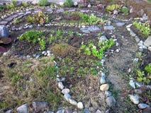 Garden landscape decoration Royalty Free Stock Photo