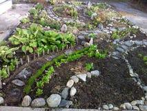 Garden landscape decoration Stock Photos
