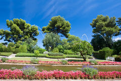 Garden landscape with flowers and blue sky Stock Photography