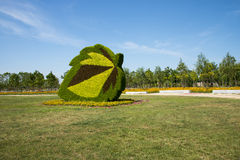 Garden landscape, three-dimensional flower beds Stock Photos