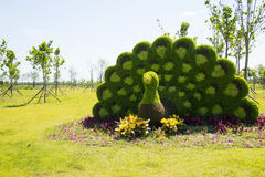 Garden landscape, three-dimensional flower beds Stock Photos