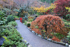 Garden landscaping royalty free stock images