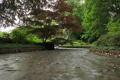 Creek in garden landscape Stock Image
