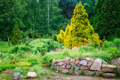 Garden Landscaping Design. Flower Bed, Green Trees Royalty Free Stock Images