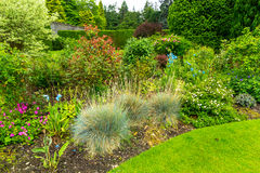 Garden landscaping in the summer royalty free stock image