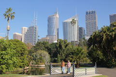 Botanic Garden landscape with Sydney skyline. Landscape architecture of the Royal Botanic Gardens in Sydney, Australia, with towers in the background and two royalty free stock photos