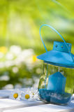 Garden lantern. With daisy flower stock image