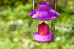 Garden lantern. With nature backgorund stock image
