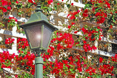 Garden lantern Stock Photography