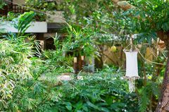 Garden lantern on Boracay, Philippines Royalty Free Stock Photography